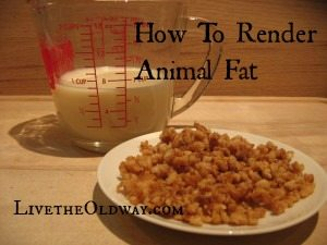 how to render animal fat