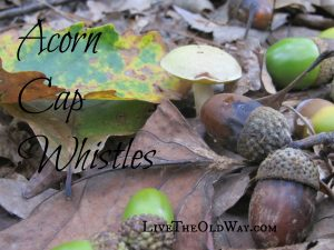 Acorn cap whistles, fall crafts