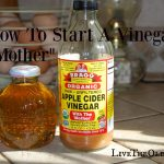 "Make Your Own Vinegar ""Mother"""