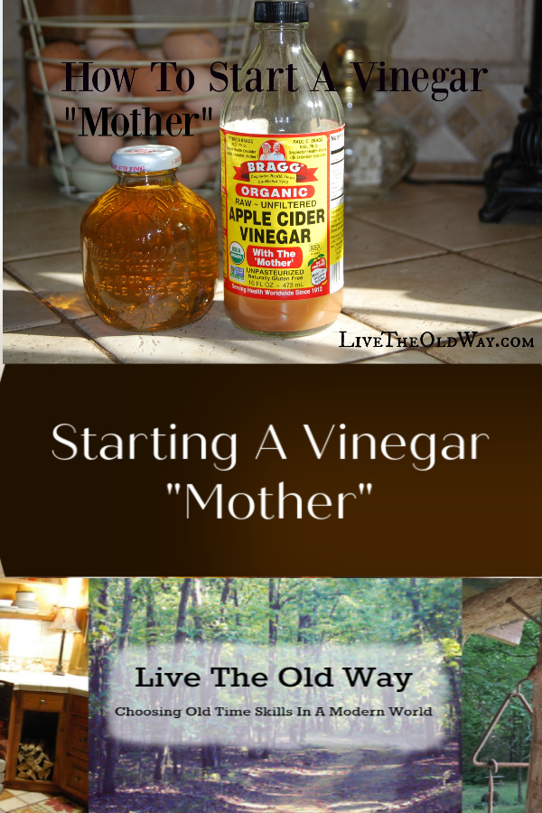 How to start a vinegar mother