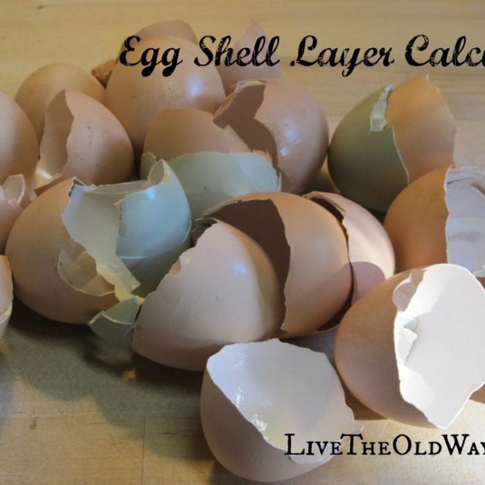 Egg Shell Layer Calcium