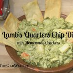 Lamb's Quarters Chip Dip