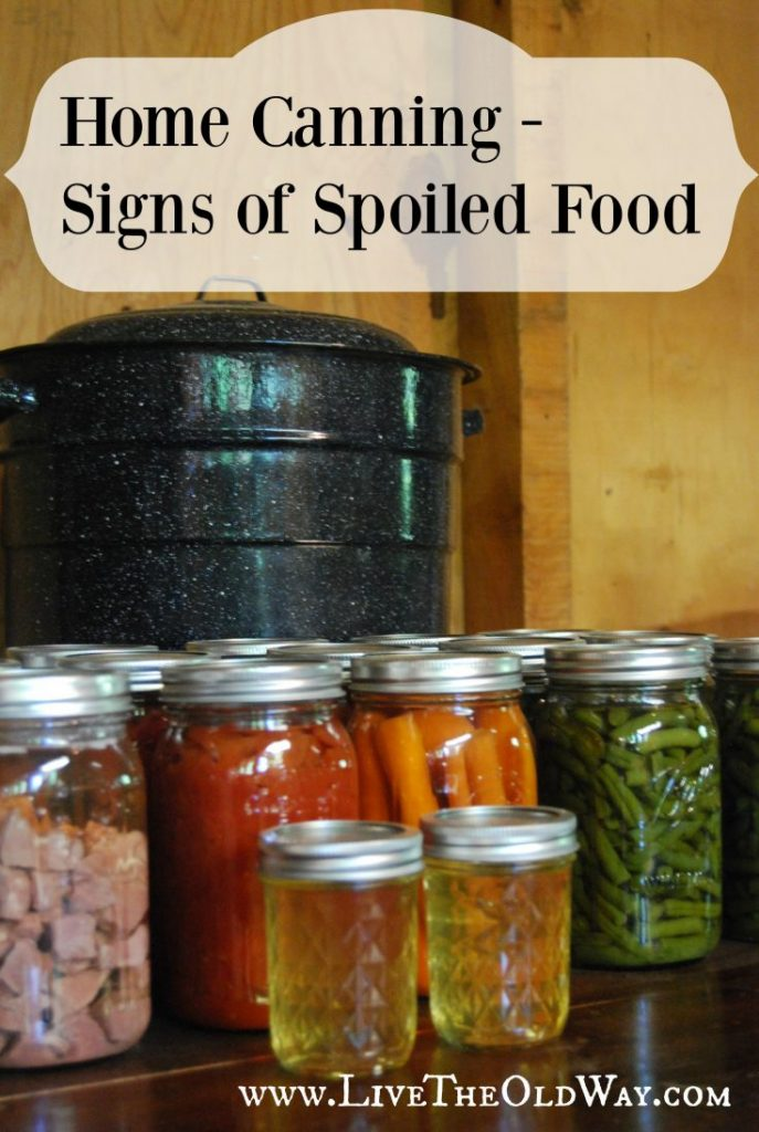 how to tell if canned food is bad