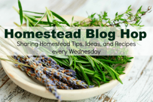 Homestead Blog Hop 160