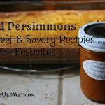 Wild Persimmon – 4 Sweet & Savory Recipes for Fall Festivities