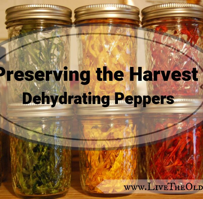 Preserving The Harvest – Dehydrating Peppers