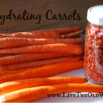 Preserving the Harvest – Dehydrating Carrots